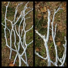Silver spray painted branches, for my winter wedding centerpieces.