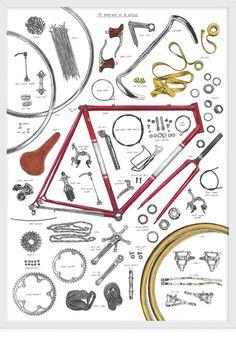 Magma Anatomy of a Bicycle Print by David Sparshott størrelse: 52 x soft art paper, 190 gms sendes i rør. Magma Anatomy of a Bicycle Print by David Sparshott size: 52 x 70 cm soft art paper, 190 gms delivered in a tube Velo Retro, Velo Vintage, Retro Bicycle, Bici Fixed, Illustrator, Bike Illustration, Bicycle Print, Bike Poster, Vintage Poster