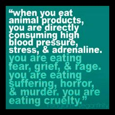 When you eat animal products, you are directly consuming high blood pressure, stress, & adrenaline. You are eating fear, grief, & rage. You are eating suffering, horror & murder. You are eating cruelty.
