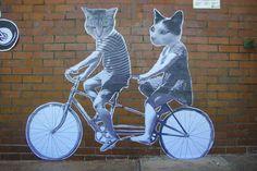 cats & bike Get your voice at http://www.Biketalker.com ! meowganizer.com
