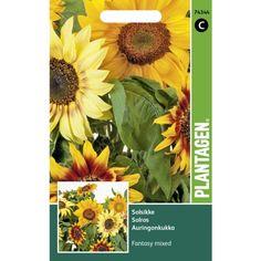 Sunflower - Fantasy blandet