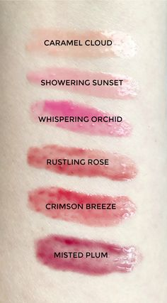 A new take on natural beauty and makeup   Burt's Bees Tinted Lip Oil   makeup swatches   makeup review   drugstore makeup   affordable makeup   best beauty products   best in beauty under $10   Florida beauty blogger Ashley Brooke Nicholas   #burtsbeesbeauty sponsored by @burtsbees