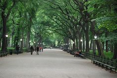 Literary Walk in Central Park | The Book Lover's Guide To The Big Apple