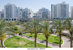 New district and green palms, Ashdod, Mediterranean Sea,Israel - Stock Image
