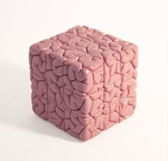 Artist Jason Freeny created this cool brain sculpture with a fully functional Rubik's Cube embedded within it.