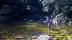 Trout fishing wallpaper fly fishing picture fly fishing painting image result for fly fishing wallpaper voltagebd Image collections
