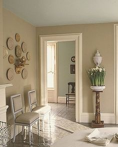 Ideas for paint colors