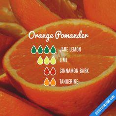 Orange Pomander - Essential Oil Diffuser Blend