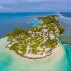 Pelican Beach Resort on South Water Caye, #Belize #SouthWaterCaye - Pelican Beach Resort on South Water Caye, #Belize #SouthWaterCaye