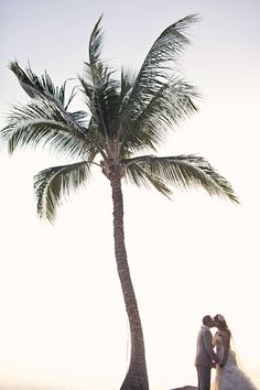 Under the palm trees -super cute for a beach wedding