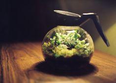 i like this idea~~
