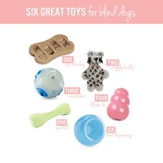SIX GREAT TOYS FOR BLIND DOGS | Dog-hearted