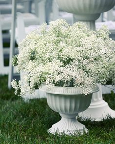 Filler flowers can wow: put baby's breath in urns and use them to line the aisle- PERFECT compliment to roses