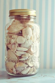 SUMMER COLLECTION 2012 :). DIY memory jar of shells from vacation.  Painting the shells is another idea if wanting to add unique decor to a room.