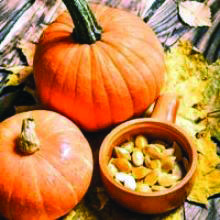 roasted pumpkin seeds aldi on this favorite site Roasted Pumpkin Seeds, Roast Pumpkin, Pumpkin Seed Nutrition, Seeds For Sale, Keto, Vegetables, Food, Cute Puppies, Roasted Squash