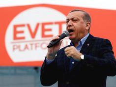 エルドアン権力への国民投票 オランダ在トルコ人71%賛成
