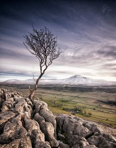 Alone   Flickr - Photo Sharing!
