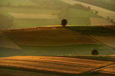 Field of Dreams – 30 Amazing Photographs to Leave You Inspired | Inspiration