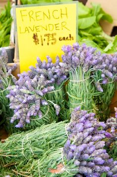 french flower market lavender