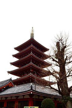 Shrine in asakusa japan