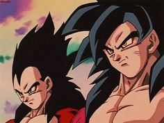 Goku & Vegeta ssj4