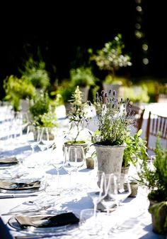 I like the simple herb pots on the table. (I'm looking for ways to highlight the lavender around the site and bring the outside into the barrel room.)