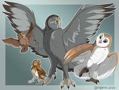 La petite bande Soren Gylfie Perce Neige et Speleon Steampunk Drawing, Owl Artwork, Wildlife Art, Animal Drawings, Art Sketches, Character Art, Illustration Art, Cartoon, Artist
