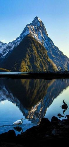 Mitre Peak ......  (Māori Rahotu) .....     is an iconic mountain in the South Island of .. NEW ZEALAND .......   .    It is one of the most photographed peaks in the country.