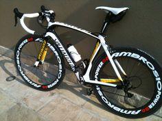 la bici di Enrico Fornaroli