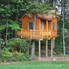 This treehouse is crazy! Click the link to see the whole project and the bedroom inside! Tree Top Builders #treehouse