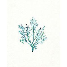 No.1 Sea Fern/ watercolor print / teal / light green / aqua / sea /... ($20) via Polyvore