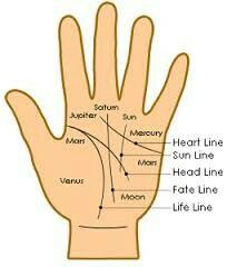 The hand of man palm reading diagram key to palmistry by louis hand lines hand linespalm readinghandsgoogle searchcharlotte m4hsunfo