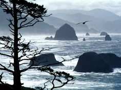 """Ecola State Park, Cannon Beach, Oregon, in the movie """"Goonies"""" the ship came out of Cannon Beach rock. The town of Cannon Beach is worth visiting, it is a lovely town. Places Around The World, Oh The Places You'll Go, Places To Travel, Places To Visit, Travel Destinations, Holiday Destinations, Oregon Beaches, Oregon Coast, Oregon Usa"""
