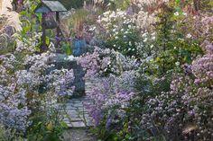 Le Jardin Plume. Photograph © Le Jardin Plume