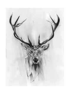 Eläimet (dekoratiivinen taide) Posters AllPosters.fi-sivustossa