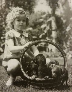 Shirley Temple, and a basket of puppies! Classic Movie Stars, Old Movie Stars, Classic Movies, Shirly Temple, Old Hollywood Stars, Temple Movie, Old Movies, Actors, Golden Age
