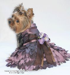 High Fashions - Dog Dresses, Pet Apparel, Designer Dresses