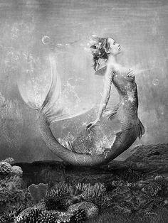 vintage mermaid #graymatter                                                                                                                                                      More