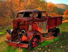 This old truck has taken on the colors of fall around it as it slowly goes to rust....
