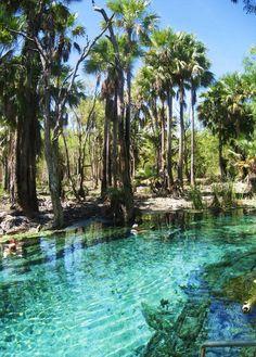Mataranka Springs - Australia