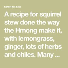 A recipe for squirrel stew done the way the Hmong make it, with lemongrass, ginger, lots of herbs and chiles. Many Hmong immigrants hunt squirrels in the US. Squirrel Stew, Squirrel Food, Wildly Delicious, Squirrels, Lemon Grass, Herbs, Recipes, Chipmunks