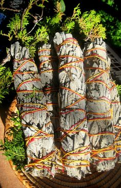Fresh Sedona Sage from the red rock canyons of the area. Magical- from SacredLandSage-etsy