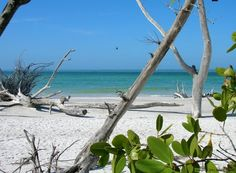 Beer Can Island. Longboat Key. Manatee Florida. Thanks Nicole for grabbing me sand from here:)