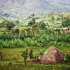 South of Addis Ababa, Ethiopia.