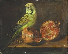 Unknown  Still Life with Parrot and Pomegranate  19th century*