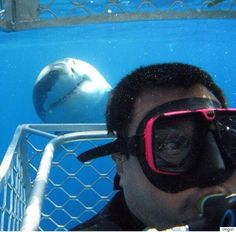 Um, no.   (but it is a great smile!) Amazing Shark Photobomb Is Enough To Convince You Great Whites Want To Be Your Friend