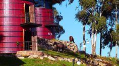 Quartos de hotel na Serra Gaúcha ficam em antigas barricas de vinho.