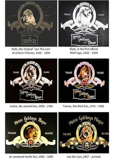 MGM (Metro Goldwyn Mayer) is an American media corporation. It started with the merger of Samuel Goldwyn's studio with Marcus Loew's Metro Pictures and Louis B. Metro Goldwyn Mayer, Film Studio, Studio Logo, Classic Hollywood, Old Hollywood, Hollywood Icons, Hollywood Studios, Hollywood Glamour, Logo Video