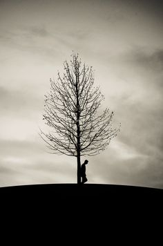♂ Solitude man and tree waiting for so long by  Adrian Limani