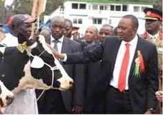 「International Trade Fair for Livestock」の画像検索結果